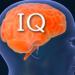 IQ u dziecka i niemowlaka